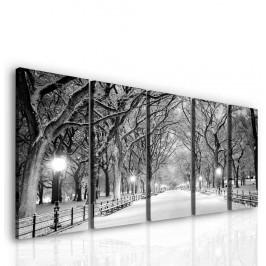 InSmile ® Večerní procházka parkem Velikost: 100x45 cm
