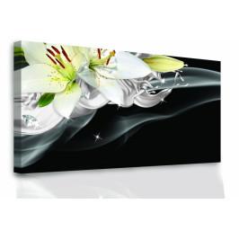 InSmile ® Lilie a diamanty Velikost: 60x30 cm