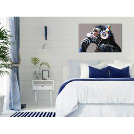 Murando DeLuxe Hudební opice Velikost: 60x40 cm