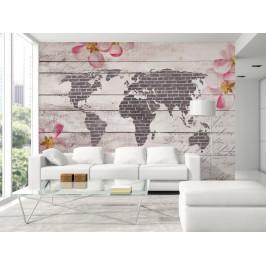 Murando DeLuxe Tapeta Romantická mapa světa Rozměry (š x v) a Typ: 147x105 cm - samolepící