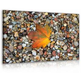 InSmile ® Obraz list na kamenech Velikost (šířka x výška): 60x40 cm