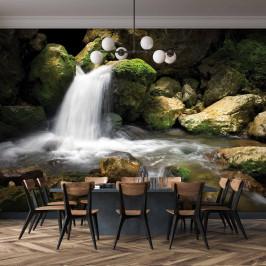 InSmile ® Tapeta Lesní potok Vel. (šířka x výška): 144 x 105 cm