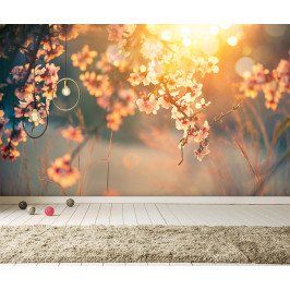 InSmile ® Tapeta něžná atmosféra Vel. (šířka x výška): 144 x 105 cm