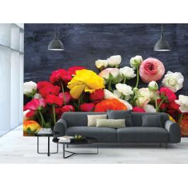 InSmile ® Tapeta Řezané květiny Vel. (šířka x výška): 144 x 105 cm