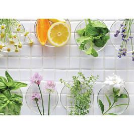 InSmile ® Tapeta Čerstvé bylinky Vel. (šířka x výška): 144 x 105 cm