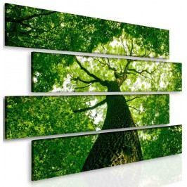 Obraz relax pod stromem (145x100 cm) - InSmile ®