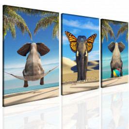 Obraz vtipný slon (150x70 cm) - InSmile ®