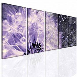 Obraz fialová křehkost (150x70 cm) - InSmile ®
