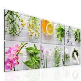Obraz bylinky (180x80 cm) - InSmile ®