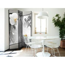Paraván stříbrná abstrakce I (135x172 cm) - Murando DeLuxe