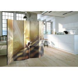 Paraván kouzelné peří (225x172 cm) - Murando DeLuxe