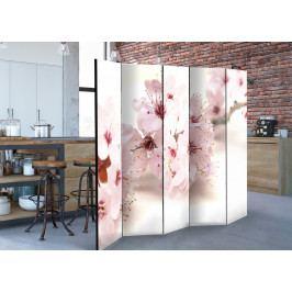 Paraván višňové květy (225x172 cm) - Murando DeLuxe