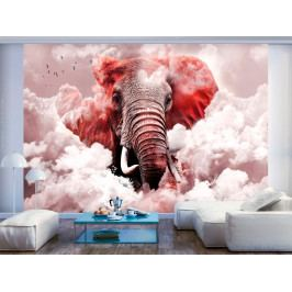 Tapeta slon v oblacích - růžový (150x105 cm) - Murando DeLuxe