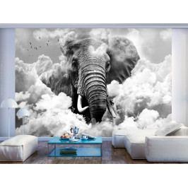 Tapeta slon v oblacích - černobílý (150x105 cm) - Murando DeLuxe