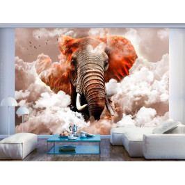 Tapeta slon v oblacích - hnědý (200x140 cm) - Murando DeLuxe