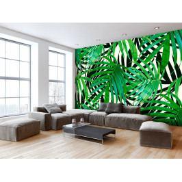 Tropické listy (200x140 cm) - Murando DeLuxe