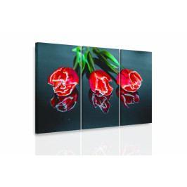 Vícedílný obraz - Tři tulipány (90x60 cm) - InSmile ®
