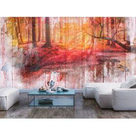 Tapeta podzimní les (200x140 cm) - Murando DeLuxe