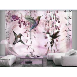 Tapeta létající kolibříci - růžová (250x175 cm) - Murando DeLuxe