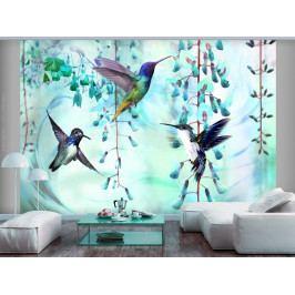 Tapeta létající kolibříci - zelená (250x175 cm) - Murando DeLuxe