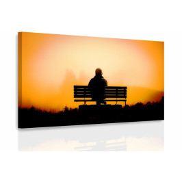 Obraz - Muž na lavičce (90x60 cm) - InSmile ®