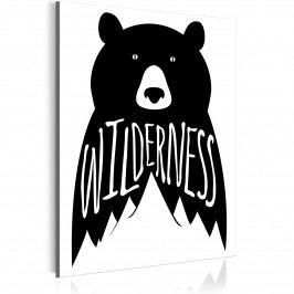 Obraz - medvěd (30x40 cm) - Murando DeLuxe