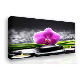 Obraz - odpočinek (90x60 cm) - InSmile ®