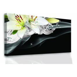 Lilie a diamanty (60x30 cm) - InSmile ®