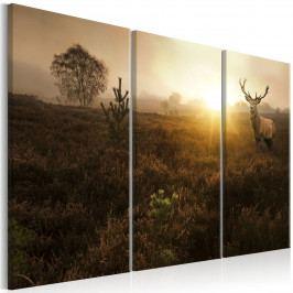 Třídílný obraz - jelen v krajině (90x60 cm) - Murando DeLuxe