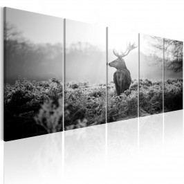 Černobílý obraz - strážce pole (150x60 cm) - Murando DeLuxe