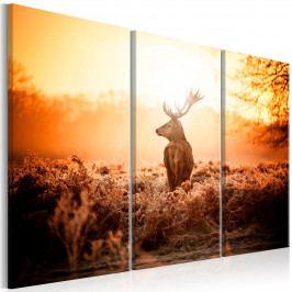 Vícedílný obraz - strážce pole (90x60 cm) - Murando DeLuxe
