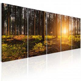 Vícedílný obraz - letní ráno (150x60 cm) - Murando DeLuxe