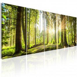 Vícedílný obraz - čarovný les (150x60 cm) - Murando DeLuxe