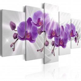 Pětidílné obrazy - fialová orchidej (200x100 cm) - Murando DeLuxe