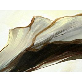 Obraz - elegance (150x80 cm) - Murando DeLuxe