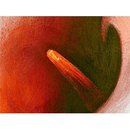 Kalie v teplých barvách (170x120 cm) - Murando DeLuxe