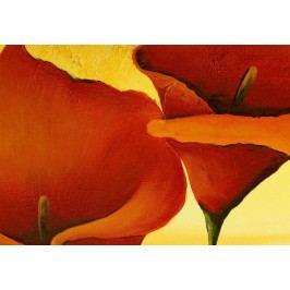 Třídílné obrazy - v pavučině zlata (120x60 cm) - Murando DeLuxe