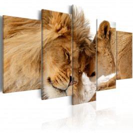 Lví pomazlení (200x100 cm) - Murando DeLuxe