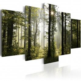 Pětidílné obrazy - lesní spánek (200x100 cm) - Murando DeLuxe