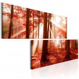 Dvoudílné obrazy - podzimní les (180x90 cm) - Murando DeLuxe