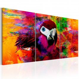 Papoušek (120x60 cm) - Murando DeLuxe