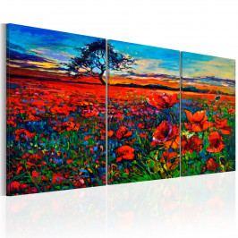 Třídílné obrazy - dolina květin (120x60 cm) - Murando DeLuxe