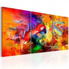 Třídílné obrazy - papoušek v ráji (120x60 cm) - Murando DeLuxe