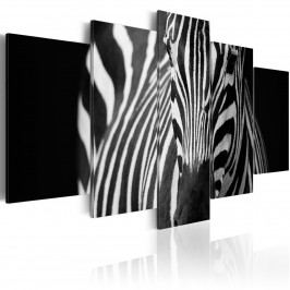 Zebra (200x100 cm) - Murando DeLuxe