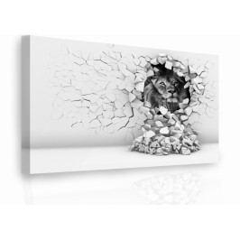 Luxusní obraz - lev (150x100 cm) - InSmile ®