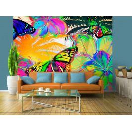 Tapeta motýlí iluze (150x116 cm) - Bimago