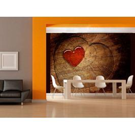 Tapeta srdce ve dřevě (150x116 cm) - Murando DeLuxe