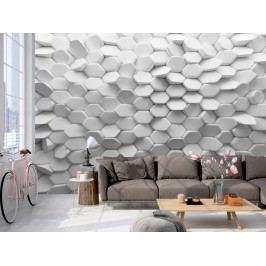 Tapeta bílá záhada (150x105 cm) - Murando DeLuxe