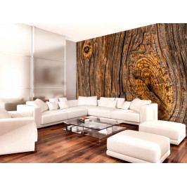 Staré dřevo (150x105 cm) - Murando DeLuxe