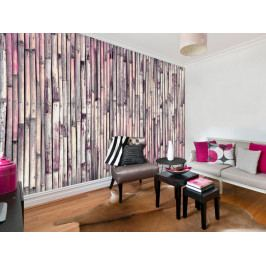 Tapeta Barevný bambus (150x105 cm) - Murando DeLuxe